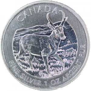 Canadian Wildlife Pronghorn Antelope 1oz Silver - 2013 - B-Stock