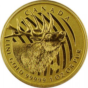 Call of the Wild Bulking Elk 1oz Gold - 2017