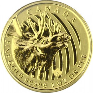 Call of the Wild Moose 1oz Gold - 2019