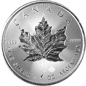 Maple Leaf 1oz Silber - 2019 Incuse