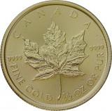 Maple Leaf 1/2oz Gold - 2020