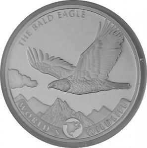 Kongo World's Wildlife -Weißkopfseeadler 1 Unze Silber - 2021